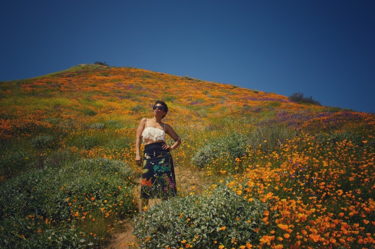 Walker canyon Lake Elsinore LaVonne Grady photography super bloom