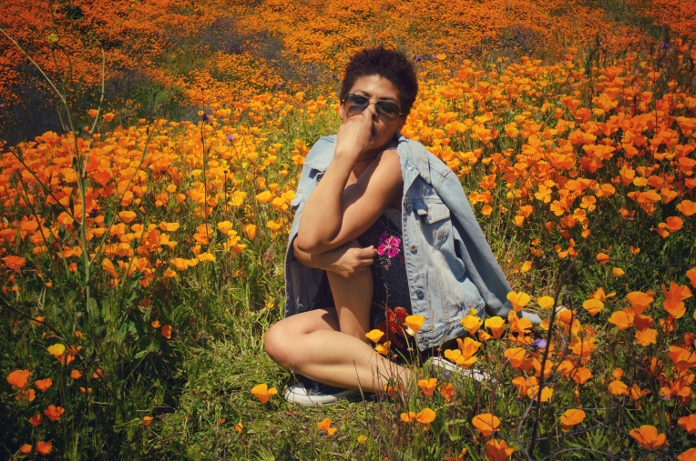Girl sitting in the middle of a poppy field walker canyon lake elsinore LaVonne Grady photography
