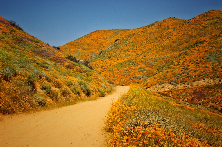 Lavonne Grady photography walker canyon Lake Elsinore